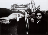 The Blues Brothers Kunst