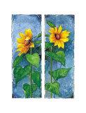 Zwei Sonnenblumen Posters by Franz Heigl