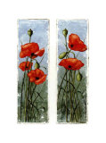 Double Poppies Posters by Franz Heigl