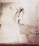 Spieglein, Spieglein Plakater af Rainer Hercks