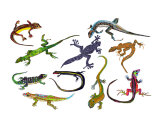 Lizards and Geckos Giclee Print by Lucy Autrey Wilson