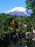 Garden and Mount Fuji Photographic Print