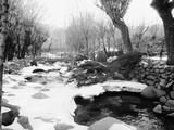 Snow Fallen Around Stream Photographic Print by Glenn Morales