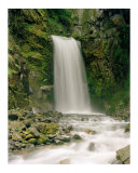 Mt.Rainier Waterfall Photographic Print by Dan Baker