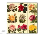 Gartenpracht Kunstdrucke von Louis Van Houtte