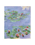 Water Lilies, c. 1914-1917 Print by Claude Monet