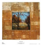 Terranova II Prints by Zachary Alexander