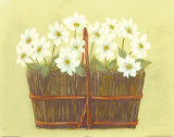 White Flowers in Wicker Basket Prints by Cuca Garcia