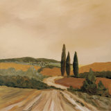 Shady Tuscan Fields Prints by J. Clark