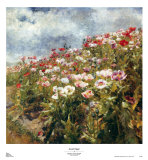 Seaside Poppies Prints by Marie Egner