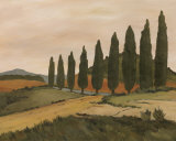 Shady Tuscan Road Print by J. Clark