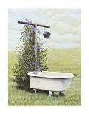 Oiseau au bain Posters par Kathleen Green