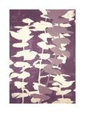 Eucalyptus, Mulberry Prints by Denise Duplock