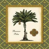 Banana Palm Kunst af Karl Rattner