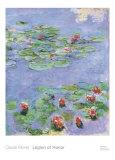 Water Lilies, c. 1914-1917 Kunst von Claude Monet