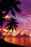 Sonnenuntergang auf Tahiti Poster