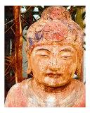 Zen Master Photographic Print by Ricki Mountain