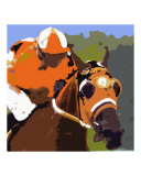 Flying Colors of Horse Racing Giclee Print by Brian James