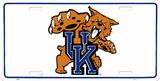 Universidad de Kentucky Cartel de metal