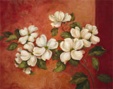 Dogwoods Print by Pamela Gladding