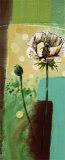 Floral Splendor IV Poster by Selina Werbelow