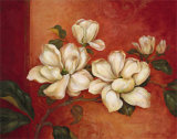 Magnolias Poster by Pamela Gladding