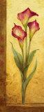 Grandiflora III Affiches par Pamela Gladding