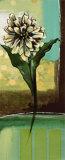 Floral Splendor II Posters by Selina Werbelow