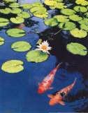 Koi Pond II Posters by Maureen Love