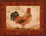 Gallo Dorato Posters par Pamela Gladding