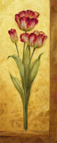 Grandiflora IV Posters par Pamela Gladding