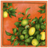 Citrons Print by Vincent Jeannerot