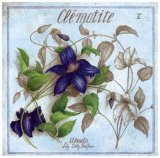 Clematite Poster by Vincent Jeannerot