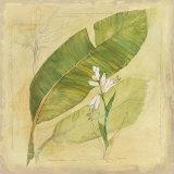 Botanical Study I Kunstdrucke von Avery Tillmon