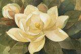 Majestic Magnolia Poster von Albena Hristova