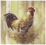Coq Prints by  Clauva