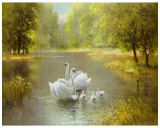 Swan Family Prints by Max Weber