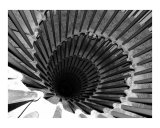 Spiral Staircase in Lublijana Photographic Print by Donna Corless
