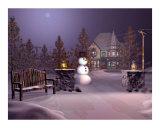A Calm Winters Night Photographic Print by John Junek