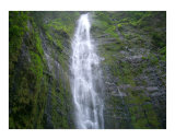 Waterfall Photographic Print by Quest Kennelly