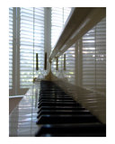 Musical Reflections Photographic Print by Florene 