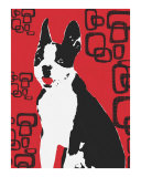 Red Boston Pop Art Photographic Print by Angel Turner Dyke