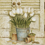Potted Tulips II Prints by Eric Barjot