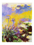 Claude Monet - Les Agapanthes - Reprodüksiyon