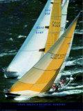 Swan America Regatta, Newport Posters by Carlo Borlenghi