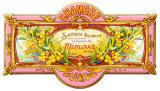 Mimosa Plaque en métal
