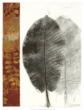 Leaf Study I Print by Kerry Vander Meer