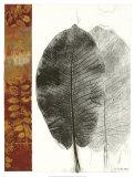 Leaf Study I Print by Kerry Vander Meer