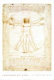 Leonardo Da Vinci's - Vituvian Man Prints