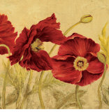 Jacquard Poppies II Poster by Laurel Lehman